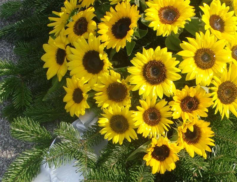4 Bukett mit Sonnenblumen