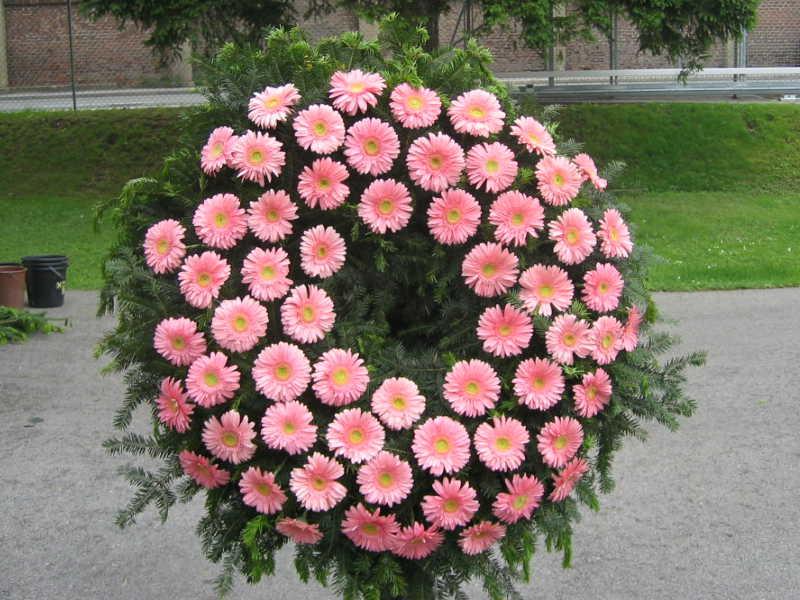55 Trauerkranz mit rosa Gerbera