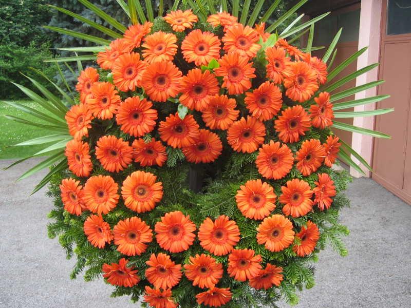 57 Trauerkranz mir orangen Gerbera