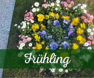 Frühlingsbepflanzung Grab