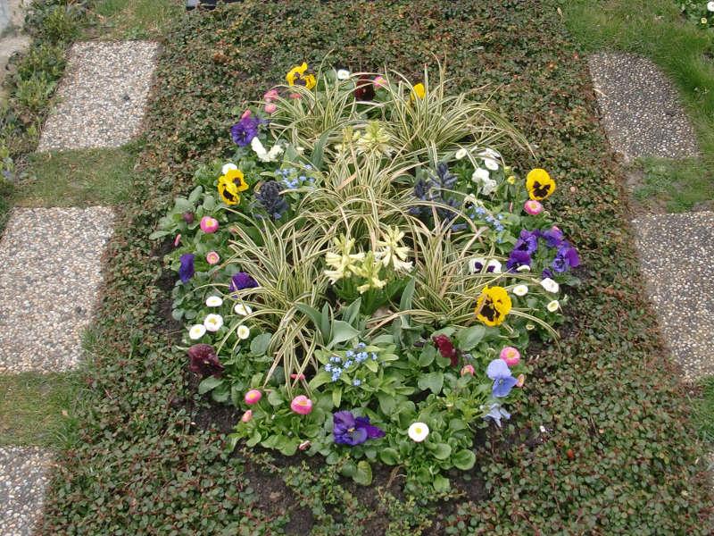 8 Frühlingsbepflanzung mit Stiefmütterchen, Hyazinthen, Vergissmeinicht